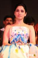 Tamannaah at Filmfare Awards 2016 (8)