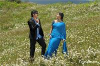 Bangaru Babu Movie Gallery (17)