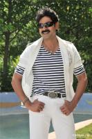 Bangaru Babu Movie Gallery