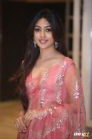 Anu Emmanuel Actress Photos