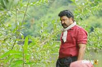 Mohanlal in Pulimurugan (5)
