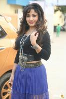 Maadhavi Latha at Indian Entertainment League Logo Launch (14)