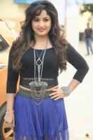 Maadhavi Latha at Indian Entertainment League Logo Launch (2)
