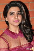 Samantha at T Grill Restaurant Launch (19)