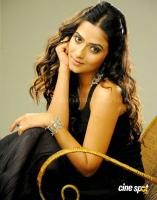 Athidi Sharma south actress photos,gallery stills (19)