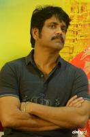 Nagarjuna at Om Namo Venkatesaya Success Meet (2)