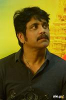 Nagarjuna at Om Namo Venkatesaya Success Meet (6)
