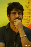 Nagarjuna at Om Namo Venkatesaya Success Meet (7)