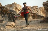 Venkatadri Movie Gallery (10)