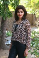 Dhansika at Vizhithiru Press Meet (1)