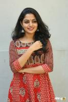 Actress Nikila Vimal Photoshoot (20)