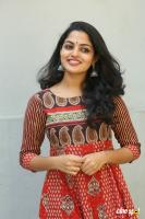 Actress Nikila Vimal Photoshoot (21)