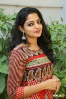 Actress Nikila Vimal Photoshoot (4)
