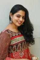 Actress Nikila Vimal Photoshoot (44)