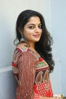 Actress Nikila Vimal Photoshoot (47)