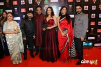 Red Carpet Of Zee Cine Awards 2017 Photos