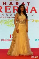The Bharat Prerna Awards 2017 (9)