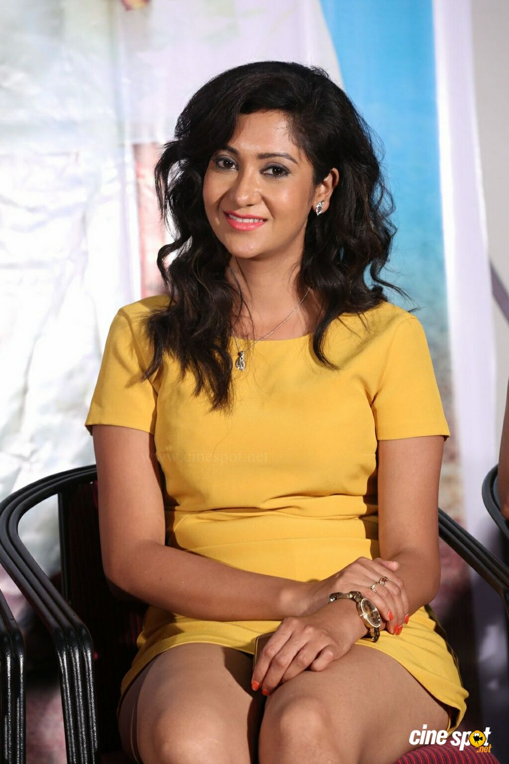 Sindhu Affan at Oollo Pelliki Kukkala Hadavidi Press Meet (7)