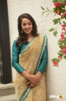 Tejaswi At V Care Foundation Annual Fundraising (17)