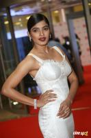 Sanchita Shetty at Filmfare Awards 2017 (7)