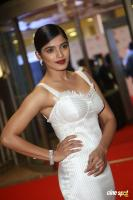 Sanchita Shetty at Filmfare Awards 2017 (8)