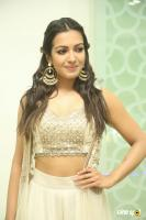 Catherine Tresa at Goutham Nanda Success Meet (15)