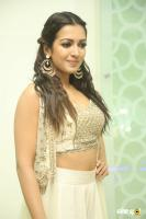 Catherine Tresa at Goutham Nanda Success Meet (16)