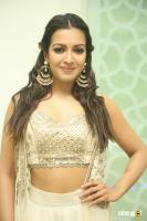 Catherine Tresa at Goutham Nanda Success Meet (19)