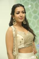 Catherine Tresa at Goutham Nanda Success Meet (29)