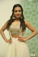Catherine Tresa at Goutham Nanda Success Meet (4)