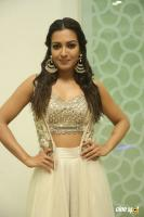 Catherine Tresa at Goutham Nanda Success Meet (5)