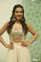 Catherine Tresa at Goutham Nanda Success Meet (6)