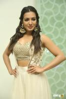 Catherine Tresa at Goutham Nanda Success Meet (7)