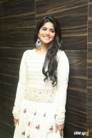 Megha Akash at LIE Pre Release Function (20)