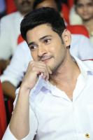 Mahesh Babu at Spyder Pre Release Event (20)