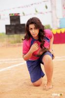 Nikki Galrani Stills in Pakka Movie (2)