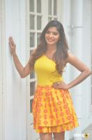 Sanchita Shetty at Johnny Movie Press Meet (2)