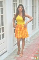 Sanchita Shetty at Johnny Movie Press Meet (3)