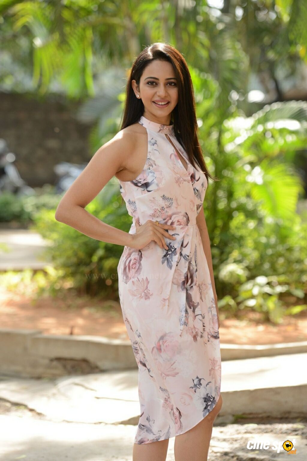 Rakul Preet Singh at Khakee Movie Success Meet (4)