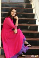 Bhumika Chawla Interview Photos (11)