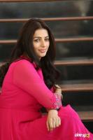 Bhumika Chawla Interview Photos (12)