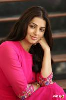 Bhumika Chawla Interview Photos (14)