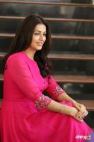 Bhumika Chawla Interview Photos (16)