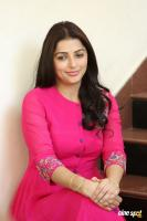 Bhumika Chawla Interview Photos (17)