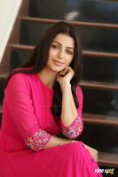 Bhumika Chawla Interview Photos (19)