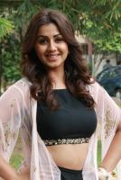 Nikki Galrani at Kalakalappu 2 Movie Press Meet (1)