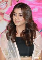 Nikki Galrani at Kalakalappu 2 Movie Press Meet (2)