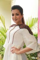 Catherine Tresa at Kalakalappu 2 Movie Press Meet (1)