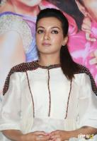 Catherine Tresa at Kalakalappu 2 Movie Press Meet (2)