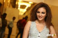 Seerat  Kapoor at Touch Chesi Chudu Pre Release Event (5)